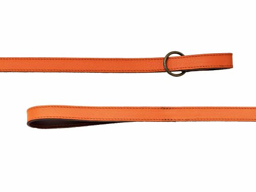 Leather Collar and Leash